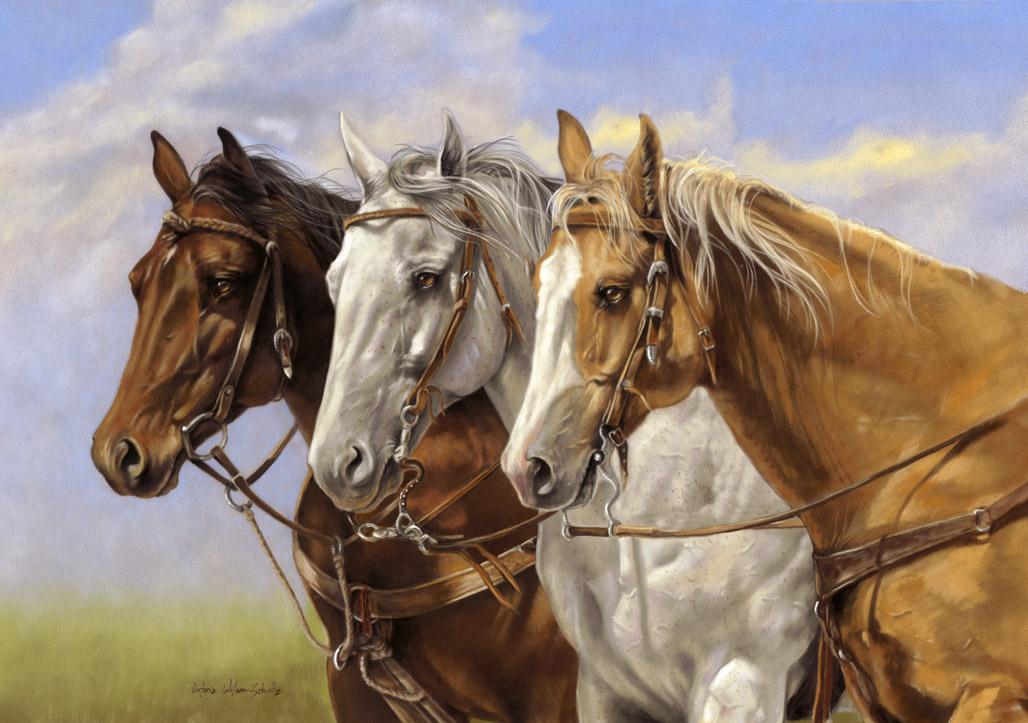 раскраски лошади для детей, бесплатно распечатать