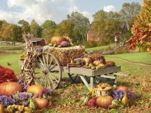 Autumn Treasures